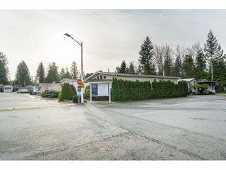 """Photo 2: 14 24330 FRASER Highway in Langley: Otter District Manufactured Home for sale in """"Langley Grove Estates"""" : MLS®# R2518685"""