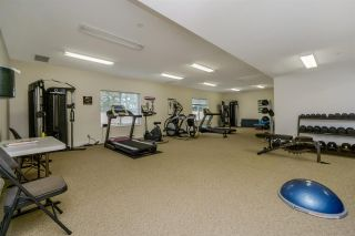 "Photo 14: 406 12464 191B Street in Pitt Meadows: Mid Meadows Condo for sale in ""LASEUR MANOR"" : MLS®# R2319773"