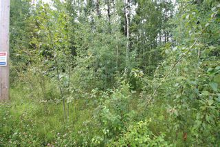 Photo 4: 65 15065 TWP RD 470: Rural Wetaskiwin County Rural Land/Vacant Lot for sale : MLS®# E4257316