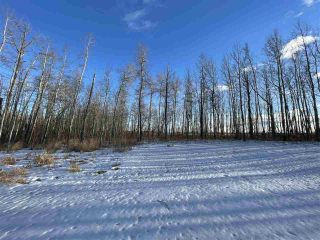 Photo 30: 13 55504 RGE RD 13: Rural Lac Ste. Anne County House for sale : MLS®# E4229579