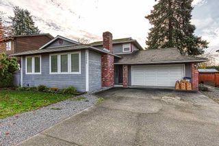 Photo 1: 20400 THORNE Avenue in Maple Ridge: Southwest Maple Ridge House for sale : MLS®# R2419754