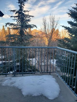 Photo 13: 404 21 Dover Point SE in Calgary: Dover Apartment for sale : MLS®# A1068387