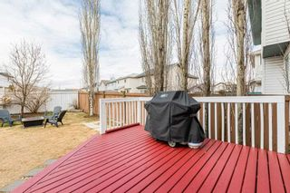 Photo 38: 8810 174 Avenue in Edmonton: Zone 28 House for sale : MLS®# E4241255