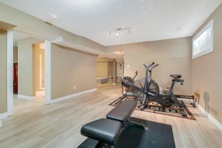 Photo 30: 5 Hickory Trail: Spruce Grove House for sale : MLS®# E4264680