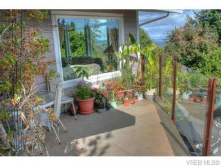 Photo 17: 5036 Sunrise Terr in VICTORIA: SE Cordova Bay House for sale (Saanich East)  : MLS®# 743056