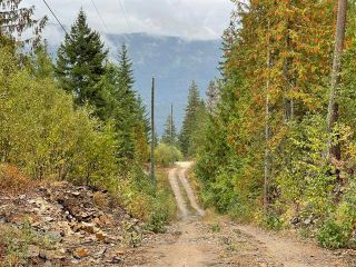 Photo 22: 292 Terry Road, in Enderby: Vacant Land for sale : MLS®# 10239679
