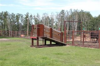 Photo 48: 41405 Range Road 231: Rural Lacombe County Detached for sale : MLS®# CA0173239