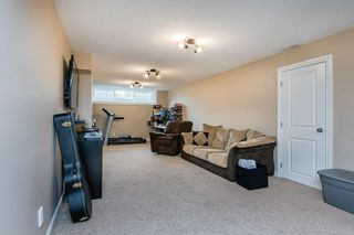 Photo 32: 22 BALMORAL Drive: St. Albert House for sale : MLS®# E4239500