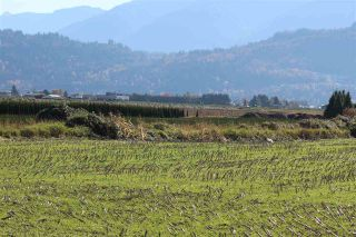 Photo 9: 46680 CHILLIWACK CENTRAL Road in Chilliwack: Chilliwack E Young-Yale Land for sale : MLS®# R2510955
