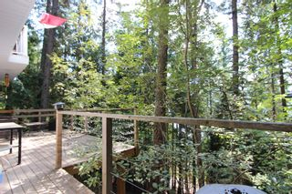 Photo 16:  in : Anglemont House for sale (North Shuswap)  : MLS®# 10239335