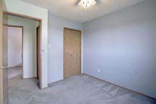 Photo 25: 8014 15A Avenue in Edmonton: Zone 29 House for sale : MLS®# E4265979