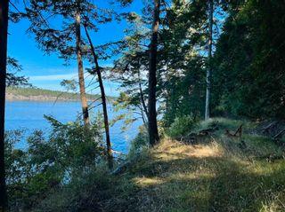 Photo 11: 455 EAST POINT Road: Saturna Island Land for sale (Islands-Van. & Gulf)  : MLS®# R2602699