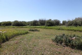 Photo 11: SE ¼ 30-19-28 W4M: Rural Foothills County Residential Land for sale : MLS®# A1069509