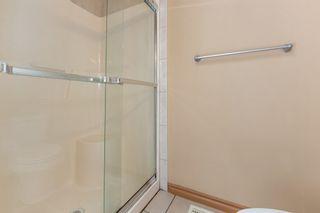Photo 18: 3216 TREDGER Close in Edmonton: Zone 14 House for sale : MLS®# E4233312
