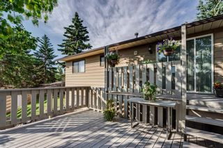 Photo 32: 644 RADCLIFFE Road SE in Calgary: Albert Park/Radisson Heights Detached for sale : MLS®# A1025632