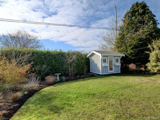 Photo 19: 3232 Frechette St in VICTORIA: SE Camosun House for sale (Saanich East)  : MLS®# 780628