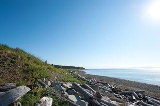 Photo 2: 650 Lazo Rd in : CV Comox Peninsula Land for sale (Comox Valley)  : MLS®# 856712