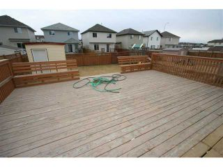Photo 19: 300 SADDLEMEAD Close NE in CALGARY: Saddleridge Residential Detached Single Family for sale (Calgary)  : MLS®# C3500117