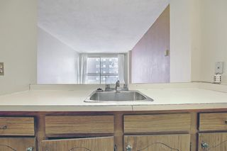 Photo 10: 210 340 14 Avenue SW in Calgary: Beltline Apartment for sale : MLS®# A1104058