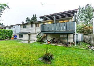 Photo 31: 20250 48 AVENUE in Langley: Langley City Home for sale ()  : MLS®# R2305434