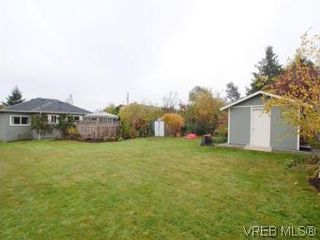 Photo 19: 843 Tulip Ave in VICTORIA: SW Marigold House for sale (Saanich West)  : MLS®# 554188