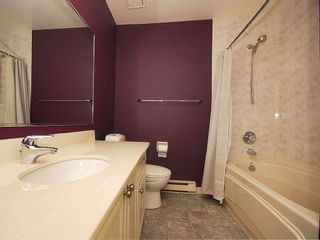 Photo 12: 4057 Tyne Crt in Victoria: Residential for sale : MLS®# 290944