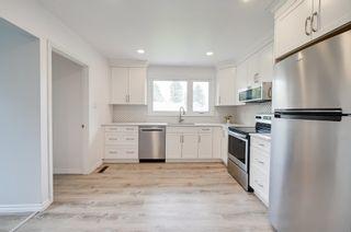 Main Photo: 10916 36A Avenue in Edmonton: Zone 16 House for sale : MLS®# E4264218