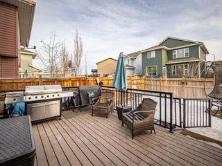Photo 31: 878 Auburn Bay Boulevard SE in Calgary: Auburn Bay Detached for sale : MLS®# A1077618