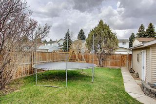 Photo 30: 80 Erin Grove Close SE in Calgary: Erin Woods Detached for sale : MLS®# A1107308