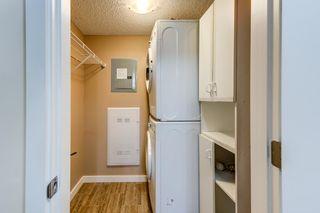 Photo 29: 204 5816 MULLEN Place in Edmonton: Zone 14 Condo for sale : MLS®# E4262303