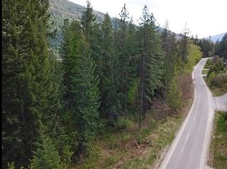 Photo 3: Lot L VIEW RIDGE ROAD in Nelson: Vacant Land for sale : MLS®# 2460797