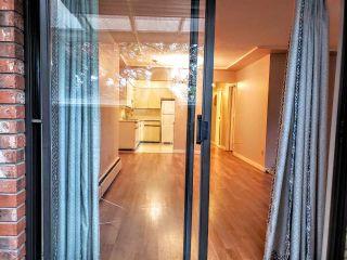"""Photo 7: 105 8770 LAUREL Street in Vancouver: Marpole Condo for sale in """"VILLA MARINE"""" (Vancouver West)  : MLS®# R2458969"""