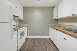 Photo 11: 103 8527 82 Avenue in Edmonton: Zone 17 Condo for sale : MLS®# E4245593