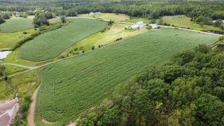 Photo 4: Lot 16 Three Brooks Road in Bay View: 108-Rural Pictou County Vacant Land for sale (Northern Region)  : MLS®# 202102184