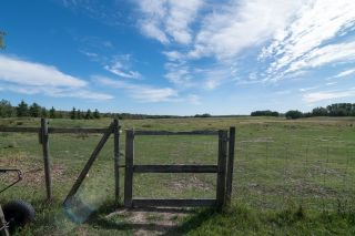 Photo 49: 51071 223: Rural Strathcona County House for sale : MLS®# E4261983