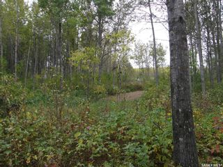 Photo 8: Lot 10 Delaronde Way in Delaronde Lake: Lot/Land for sale : MLS®# SK851495