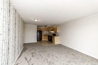 Photo 19: 329 16221 95 Street in Edmonton: Zone 28 Condo for sale : MLS®# E4257532