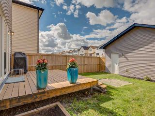 Photo 17: 88 COPPERSTONE Terrace SE in CALGARY: Copperfield Residential Detached Single Family for sale (Calgary)  : MLS®# C3621229
