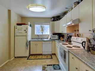 Photo 22: 6668 Rey Rd in Central Saanich: CS Tanner House for sale : MLS®# 886103