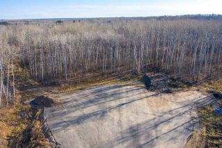 Photo 11: 40 50367 RR 222: Rural Leduc County Rural Land/Vacant Lot for sale : MLS®# E4220000