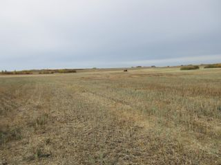 Photo 7: RR 270 North of Hwy 37: Rural Sturgeon County Rural Land/Vacant Lot for sale : MLS®# E4265129