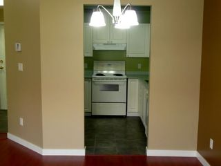 """Photo 8: 113 12769 72ND Avenue in Surrey: West Newton Condo for sale in """"Savoy"""" : MLS®# F2916546"""