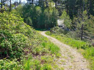 Photo 11: PCL A Curtis Rd in COMOX: CV Comox Peninsula Land for sale (Comox Valley)  : MLS®# 811298