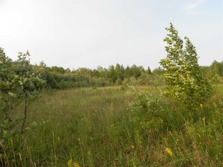 Photo 11: 22084 PT 2 PARCEL, WHITMORE RD in FORT FRANCES: Vacant Land for sale : MLS®# TB212402