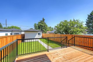 Photo 43: 622 38 Street SW in Calgary: Spruce Cliff Detached for sale : MLS®# C4290880