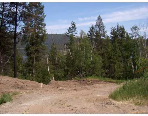 Main Photo: 1706 HAZEL Street in Williams Lake: Williams Lake - City Land for sale (Williams Lake (Zone 27))  : MLS®# N192828