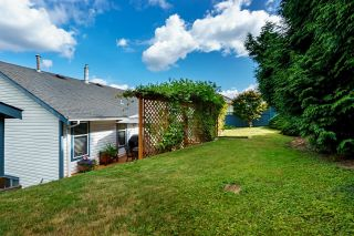 """Photo 35: 591 CLEARWATER Way in Coquitlam: Coquitlam East House for sale in """"RIVER HEIGHTS"""" : MLS®# R2612042"""