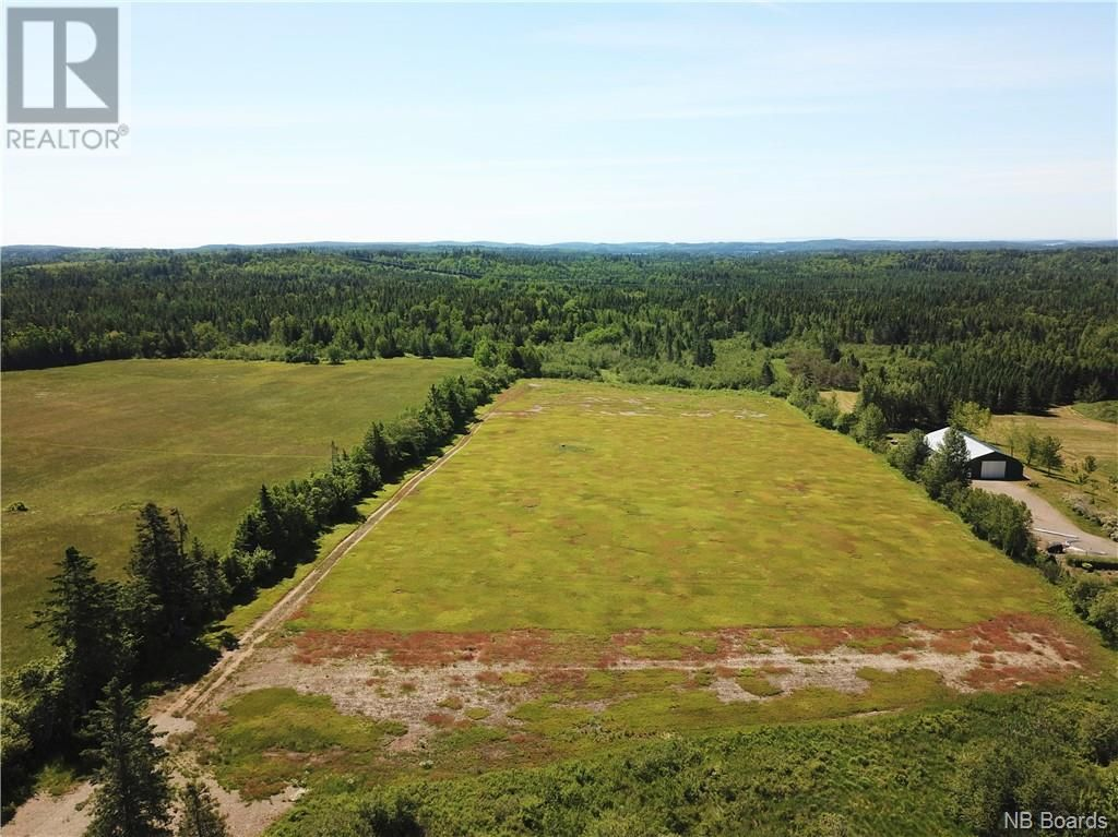 Main Photo: 100 Mount Pleasant Road in St. George: Vacant Land for sale : MLS®# NB059440