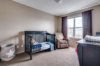 Photo 26: 9 Copperfield Point SE in Calgary: Copperfield Detached for sale : MLS®# A1100718