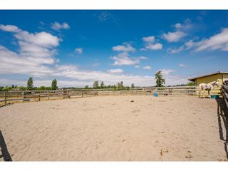 Photo 28: 23063 16 Avenue in Langley: Campbell Valley House for sale : MLS®# R2603383